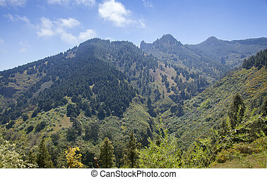Central Gran Canaria in April, view towards rock formation...