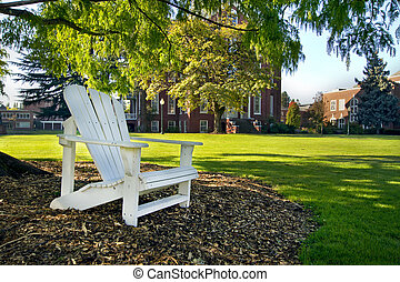Wooden Deck Chair Under the Tree in Public Parks