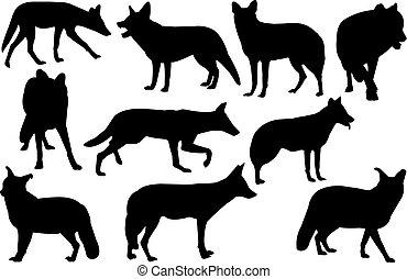 Jackal Silhouette vector illustration