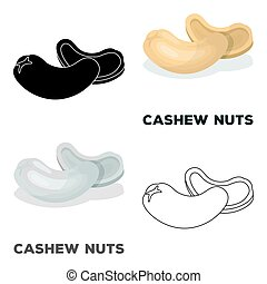 Cashew nuts.Different kinds of nuts single icon in cartoon...