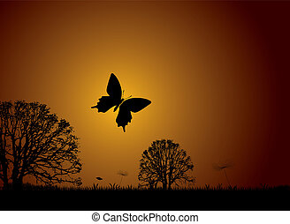 Sunset nature butterfly - Sunset nature scene with butterfly...