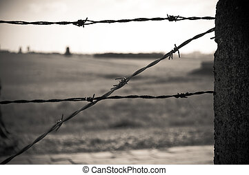 barbed wire fence in concentration camp in Majdanek in...