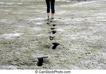 Mudflat - Girl walking barefoot trough mudflat in Brittany,...