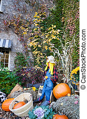 Autumn outdoor display - An autumn outdoor display featuring...