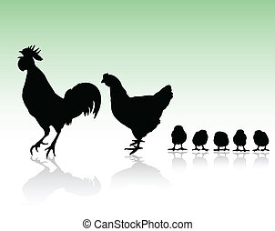 galinha, família, silhuetas