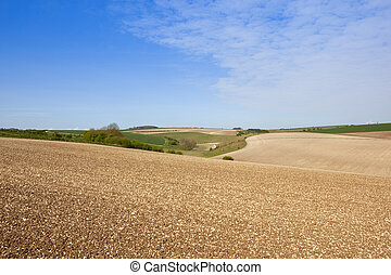 chalky cultivated hills - lines and patterns in newly...