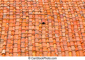 Florence roof