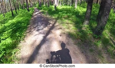 Cycling in a summer forest the first person. Cycling on a footpath in the woods with gopro and sun. Two cyclist mountainbiker during a race in the woods or forest. The Bicycle in the woods