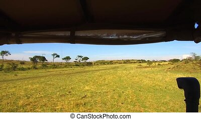off-road car driving across savanna at africa - nature,...