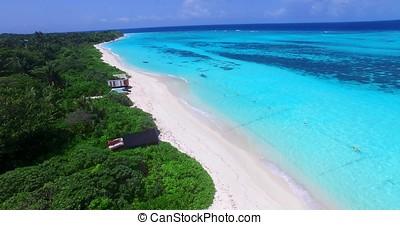 美しい, 航空写真, 海, 鳥, 砂, 青, 目, 飛行, 空, トロピカル, パラダイス, 白, 浜, 水, 背景, モルディブ, 島, 儀礼飛行, 海洋, 無人機,  4k,  v00788