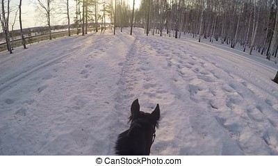 Riding on horseback in the winter woods . Riding on a horse...