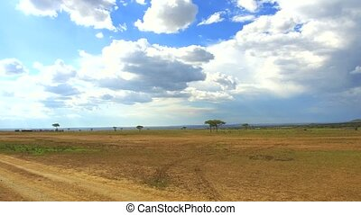 village huts in savanna at africa - nature, landscape,...