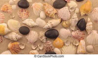 Rotation of seashells and black stones.View from above
