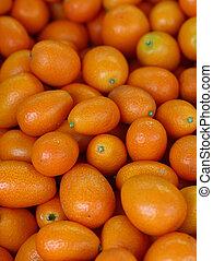 Fresh orange cumquat citrus fruits - Fresh ripe orange...