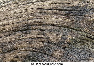 fissured wood surface - a full frame brown old fissured wood...