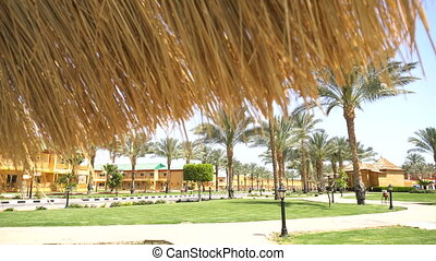 Relaxing zone near swimming pool - Relaxing zone and palm...