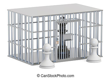 cage, prison cell with chess king. 3D rendering