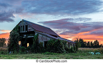 Old Wooden Farm Shed