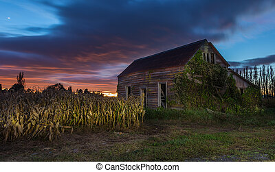 Wooden Old Shed