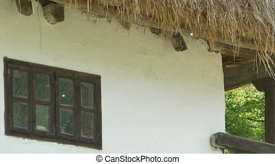 Hay Roof and Wooden Window - A hay roof on a rustic house...