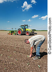 Farmer working in the fields - Farmer is working outdoor in...