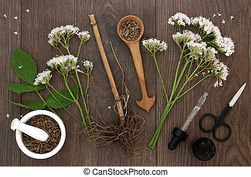 Valerian Herb Root and Flowers - Valerian herb root and...