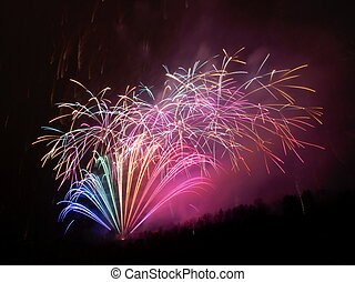 Firework - Beautiful shapes of firework during the...