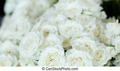 A lot of white roses stand in pots buckets in a flower shop
