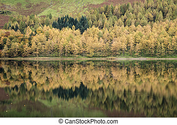 Stuning Autumn Fall landscape image of Lake Buttermere in...