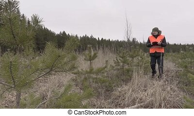 Lumberjack walking and writing near young pines