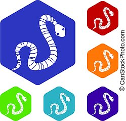 Striped snake icons set hexagon isolated vector illustration