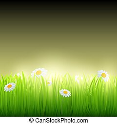 Green grass with flowers. Vector image.