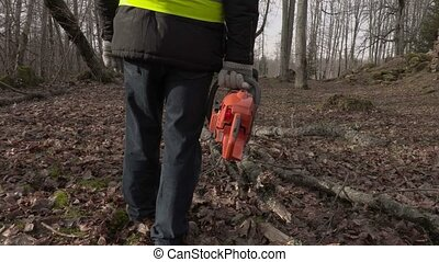 Worker with chainsaw near fallen tree in park