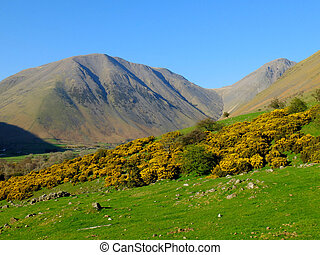 Fells - The landscape of the Cumbrian fells, UK