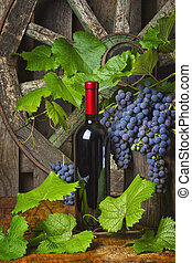 A bottle of red wine on the background of grapes - A bottle...