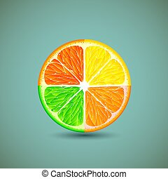 Icon citrus fruits.