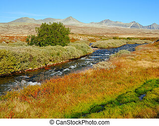 Rondane national park in Norway in autumn.