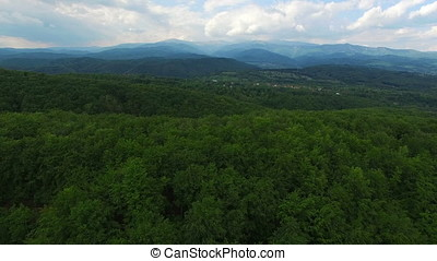 Green forest and mountain range, aerial view