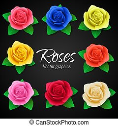 A set of realistic roses in different colors. Vector graphics