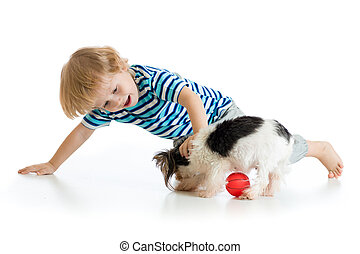 Little boy playing with dog, isolated on white background -...