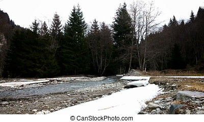 River flowing through a forest in winter