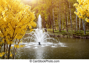 Ornamental gardens with lake, blooming bushes and fountain