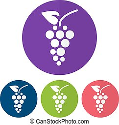 Set of grapes icon on a colorful circles. Vector illustration