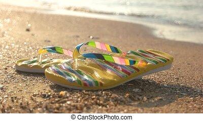 Wet flip flops on sand. Summer footwear, seashore...