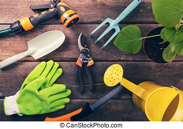 gardening tools and equipment on old wooden background
