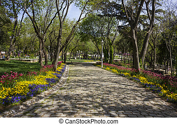 Cobbled road with trees and colorful flowers