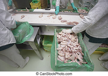 poultry processing meat food industry