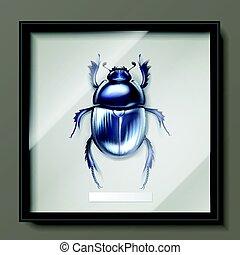 Dung beetle in frame - Vector framed dark blue shiny dung...