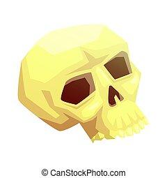 Human skull bone, vector illustration
