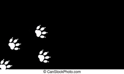 Imprint of the paw animal on black background